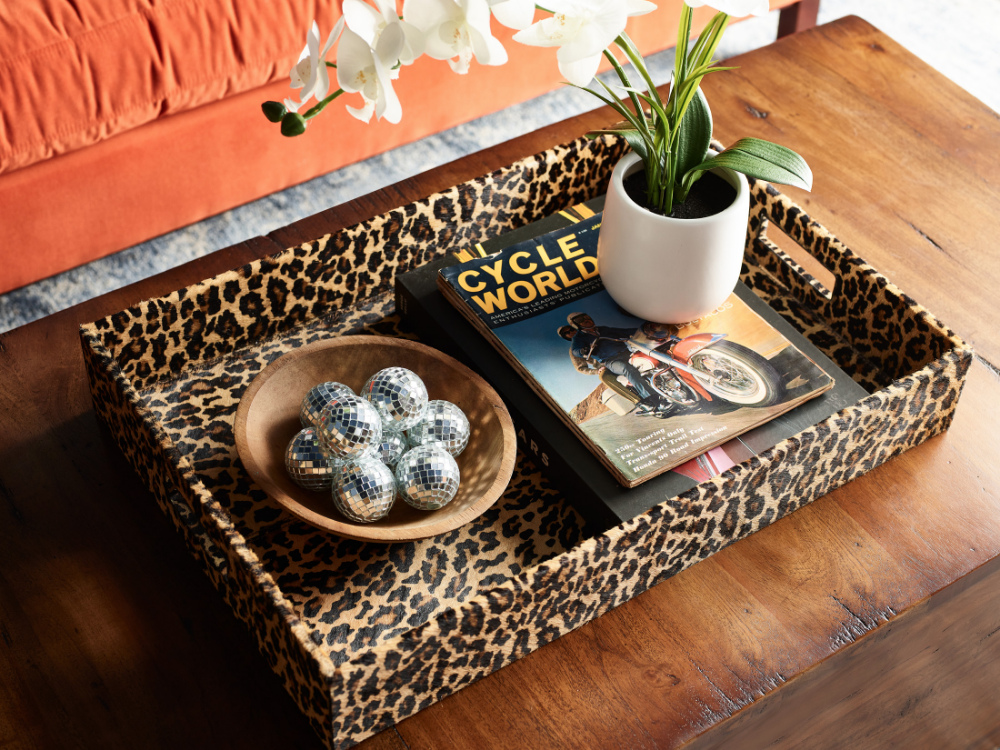 coffee-table-with-leopard-print-organizer-and-plant